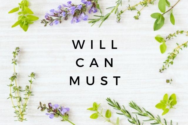 【ビジネス用語】Will・Can・Mustとは?【ビジネスパーソンの考え方】